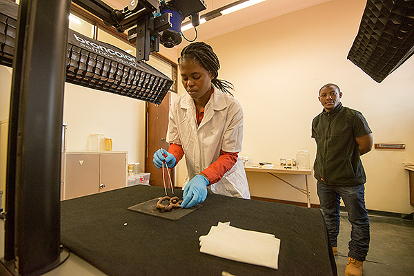 Thembeka Noelle places an earth worm specimen below our Alpa 12 FPS camera so that it can be digitized.